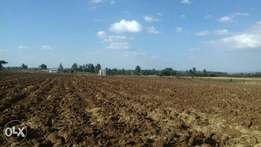 Land for lease 15 acres at Piave Njoro Nakuru