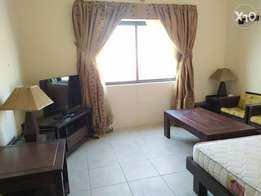 Fully furnished - Studio for rent