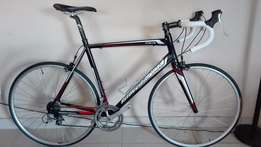 Silverback Strela 3 for sale