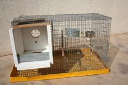 17 fully equipped show budgie breeding cages
