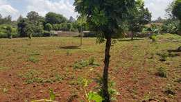 Vacant plot in runda