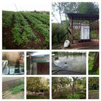 110 acres farm in Muiga, Nyeri at 1.2m per acre