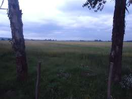 120 acres of prime land in londiani 5 km off muhoroni tarmac