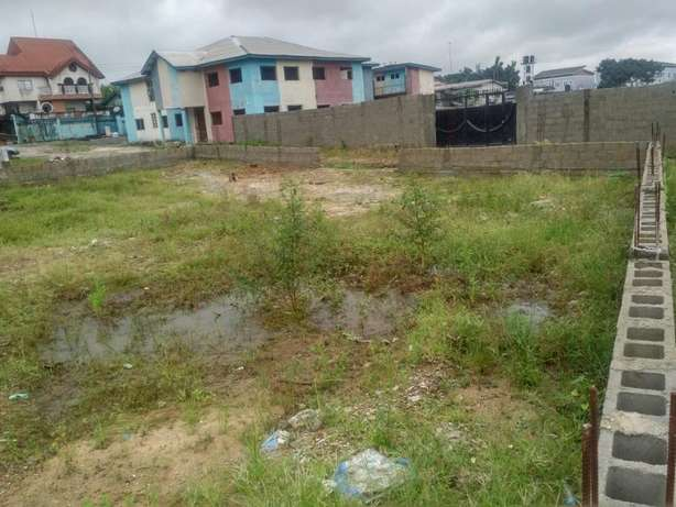 2 plots for all purpose in rumuobiakani ph Port-Harcourt - image 1