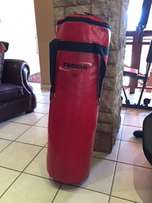 Trojan Punching bag plus wall mount