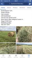 Bales for sale !