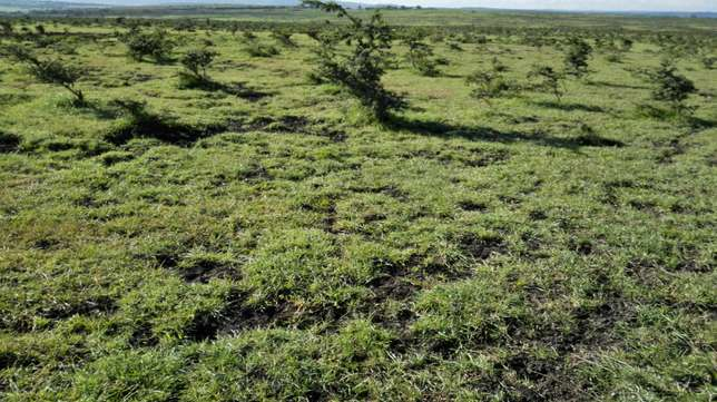 30 acres for sale in ongata rongai Ongata Rongai - image 3