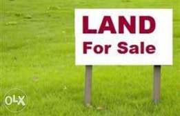 Fresh 1296sqm of land for sale at Lugbe Abuja .