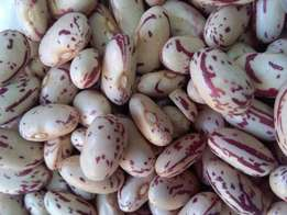 Non G.M.O Red speckled sugar beans 2
