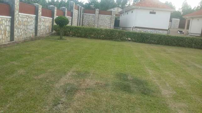 Quick sale,English house Mbarara - image 7