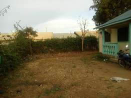 50 by 100 acres plot house on sale
