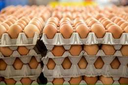 Fresh boxes of Eggs and chickens for sale