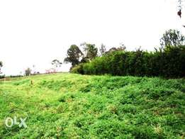 0.3 acre vacant land for sale in Nyari Estate