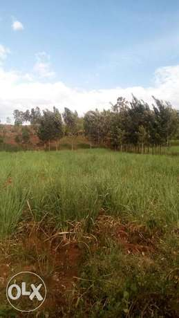 15acre land on sale in Pala,kabuoch,20km off Rongo town.160K per acre Kamenya - image 5