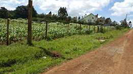 Very prime 1/2acre plot for sale at Rironi opposite Stepjoy Girls Sch