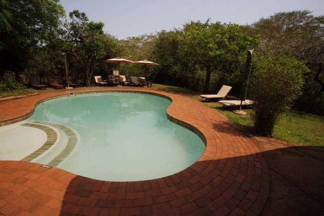 Skyblue Pool Service: Swimming Pool Builders and Repairers Randburg - image 4