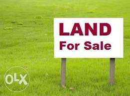 land for sale with C of O