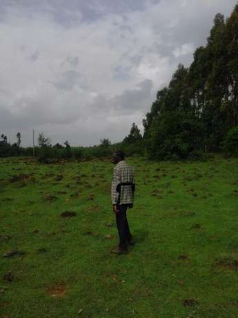 0.30 Hect (1acre) Piece of Land Eldoret South - image 2