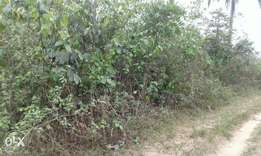 Buy and Build plots of land in Atali by Catholic road