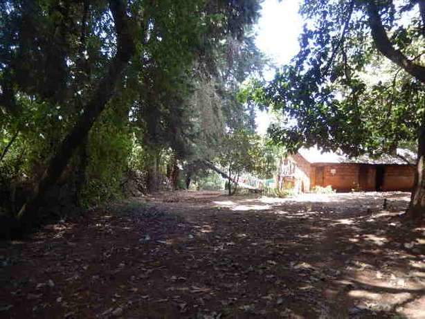Tigoni 2 Acres Near Birthday Road Nairobi CBD - image 6