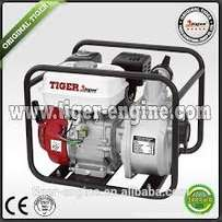 "tiger 2"" water pump petrol"