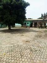 A three bedroom apartment between Madina and Ashaley botwe for rent