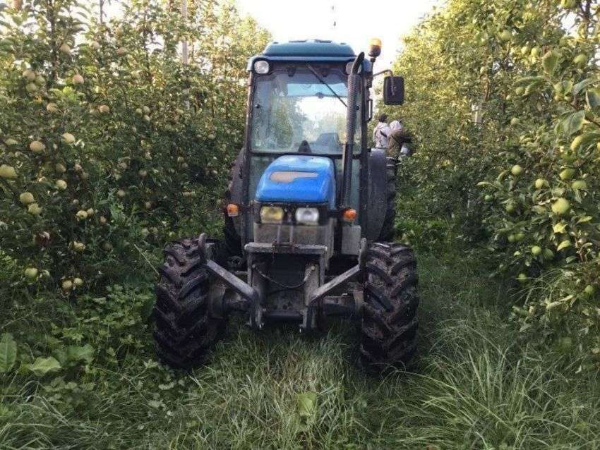 New Holland Tn90f - 2000