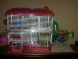 Hamsters with cage and all accessories