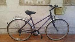 Imported Vintage Raleigh Pioneer Classic Cruiser Bicycle - R1750