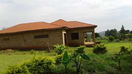 QUICK SALE HOUSE on Half an Acre-Matugga