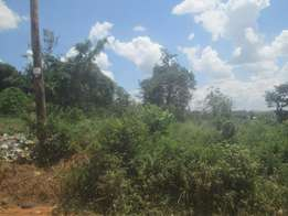 50 by 100 ft plot in kiira at 20m
