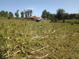 1/2 Acre vacant plot for sale in Miti moja, Kiamunyi estate