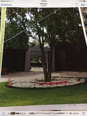 Gardening, Landscaping, Site, Bush Clearing and Grass Cutting solution Northwold - image 2
