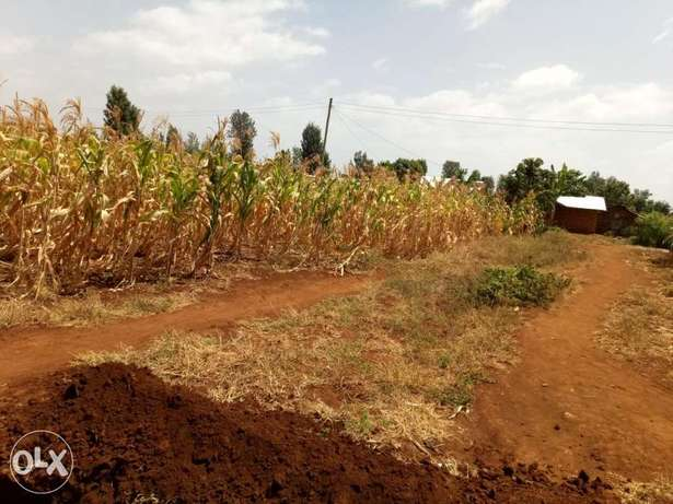 1/4 plot for sale in Kagio. Mukure - image 2