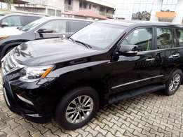 Brand New Lexus GX460 016 model