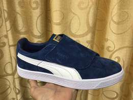 New pumas available
