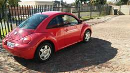 Lady owned 1 owner beetle