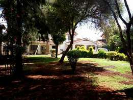 Mountain view 4 bedrooms Maisonette to let