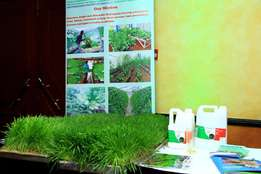 Hydroponics Fodder for sale