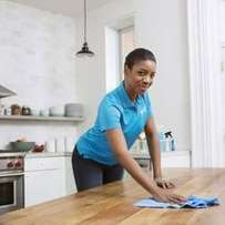 general cleaning/maids services