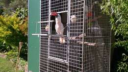 Pet Cages, Custom Types. For all sorts of Pets
