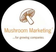 Mushroom marketing in Kenya guide