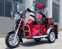 Lifan BMG-25 Tricycle for the disabled- Clearance sale