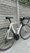 Full carbon. 54cm neotell silverback