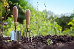 Affordable Randburg Gardening Services