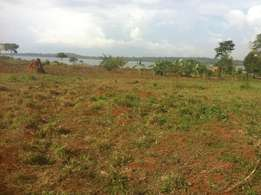 Plots of land for sale in Bugiri-Bwerenga with lake view