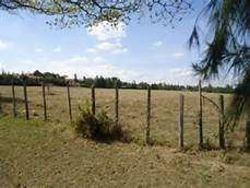 1/8 acre plots in Murang'a town