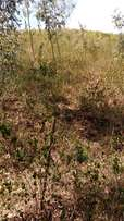 10 acres at kisumu Riat hills