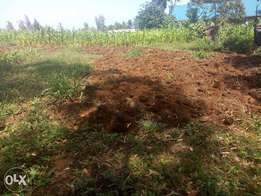 Prime Plot for sale at Makuyu behind Ciumbu town:50 by100ft.