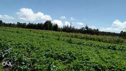 2.9 acres on Sale in Nyandarua county Mwenda-Andu